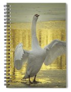 Hit It Maestro Spiral Notebook