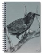 Hitchhiker Drawing Spiral Notebook