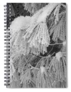 Hoar Frost On Pine Branches Spiral Notebook