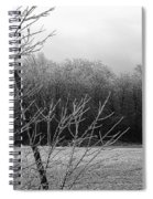 Hoar Frost On The Wood Spiral Notebook