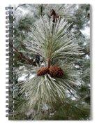 Hoarfrost 1 Spiral Notebook