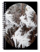 Hoarfrost 15  Spiral Notebook