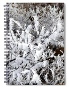 Hoarfrost 18  Spiral Notebook