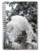 Hoarfrost 19  Spiral Notebook