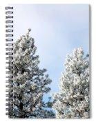 Hoarfrost 21 Spiral Notebook