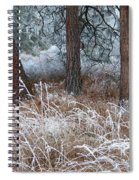 Hoarfrost 22 Spiral Notebook