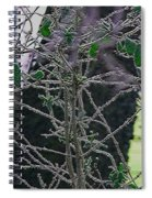 Hoars Frost-featured In Nature Photography Group Spiral Notebook