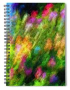 Hoedown Spiral Notebook