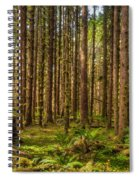 Hoh Rain Forest Spiral Notebook
