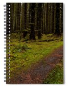 Hoh Rainforest Road Spiral Notebook