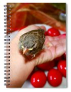 Holding A Newborn Bird Spiral Notebook