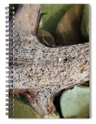 Holey Driftwood Spiral Notebook
