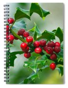 Holly Berries Spiral Notebook