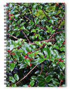Holly Bush - Spiral Notebook