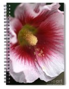 Hollyhock Flower Spiral Notebook