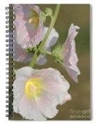 Hollyhock Named Indian Spring Pink Spiral Notebook