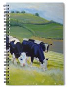 Holstein Friesian Cows Spiral Notebook
