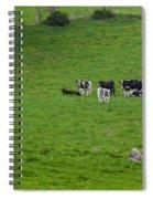 Holsteins Spiral Notebook