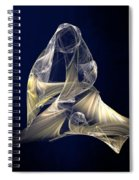 Holy Mother And Child Abstract II Spiral Notebook