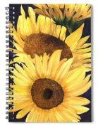Homage To The Sun Spiral Notebook