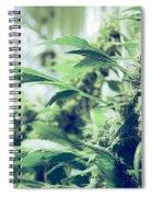 Home Grown Cannabis Plants. Spiral Notebook