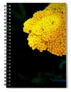 Home On The Range 16127  Spiral Notebook