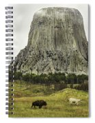 Home On The Range At Devils Tower Spiral Notebook