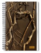 Homosycamorous Or We Evolved From Trees Spiral Notebook