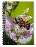Honey Bee And Blackberry Spiral Notebook