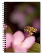 Honey Bee And Crabapple Spiral Notebook