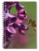Honey Bee And Lilac Spiral Notebook