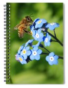 Honey Bee On Forget-me-not Flowers Spiral Notebook