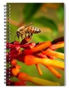 Honey Bee Profile Spiral Notebook