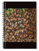 Honey Bee Swarm Spiral Notebook