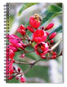 Honey Bee Working Spiral Notebook