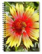 Honey Bees On Flower Spiral Notebook