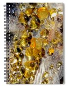 Honey Fungus Spiral Notebook