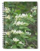 Honeysuckle Blossoms Spiral Notebook