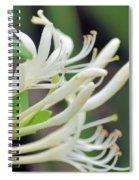 Honeysuckle Fingers Spiral Notebook
