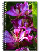 Hong Kong Orchid Spiral Notebook