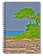 Honolulu Hi 7 Spiral Notebook