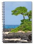 Honolulu Hi 8 Spiral Notebook