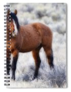 Honor Spiral Notebook
