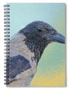 Hooded Crow Spiral Notebook
