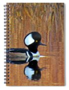 Hooded Merganser At Sunset Spiral Notebook