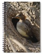 Hooded Merganser Getting Ready To Fly Spiral Notebook