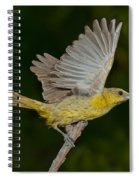 Hooded Oriole Hen At Take Spiral Notebook
