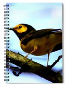 Hooded Warbler - Img 9290-002 Spiral Notebook