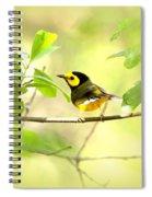 Hooded Warbler - Img_9274-009 Spiral Notebook
