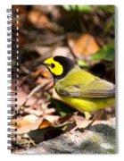 Hooded Warbler - Img_9349-001 Spiral Notebook